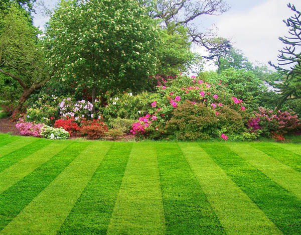 Landscaping - Americal Construction Management Group Corp.